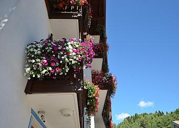Hotel 3 stars in Moena - External - Photo ID 936