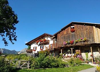 Wohnung - San Giovanni di Fassa - Vigo  - Außenansicht Sommer - Photo ID 1558