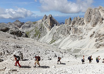 Services - Vigo di Fassa - Gallery - Photo ID 2244