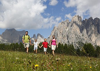 Services - Vigo di Fassa - Gallery - Photo ID 2247