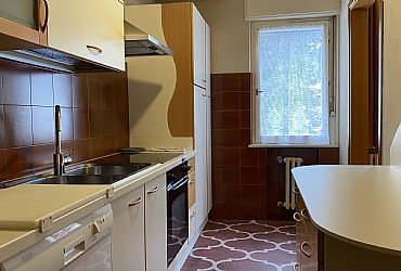 Apartment in Moena. Cookarea with gas, oven, fridge and dish-washer.