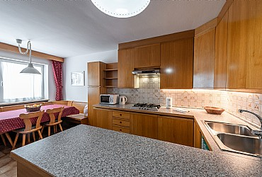 Apartment in Canazei. kitchenette with microwave oven and dishwasher