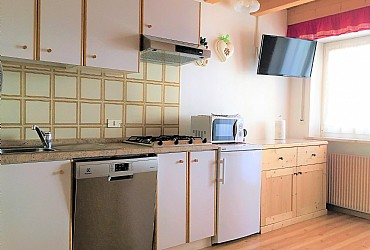 Apartment in Canazei. kitchenette with dishwasher and microwave oven